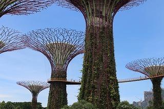 Singapore Malaysia (2).jpg