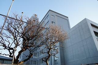 junior high school (1).jpg