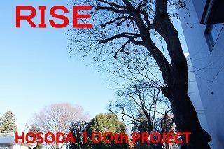 rise20201223.jpg